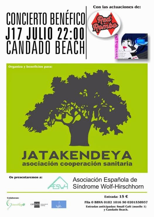 cartel+concierto+benefico+marta+garcia